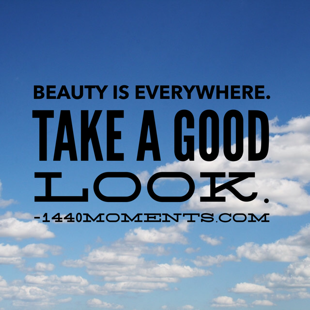 Remember That Everything Has Beauty.